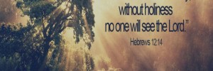 hebrews12_14-688x230